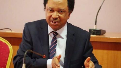 Shehu Sani reveals why North is not fighting against President Buhari