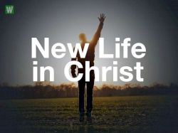 THE LIFE THAT IS IN CHRIST