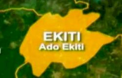 Ekiti partners with NEPC to export banana's