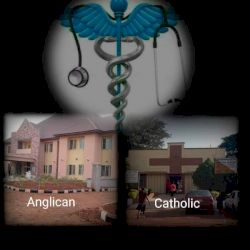 MISSIONARY FAILURE. BISHOP SHANAHAN AND FAITH FOUNDATION HOSPITALS NSUKKA AS A CASE STUDY